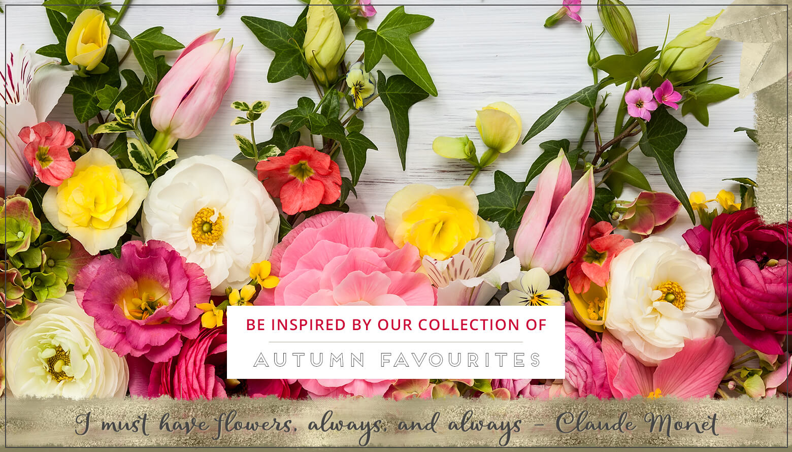 Shop local florist brisbane flower delivery browse by occasion izmirmasajfo