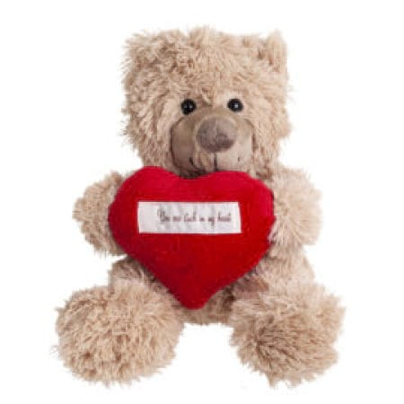 CUDDLES Teddy Bear for Valentines Day